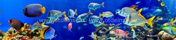 10980 Барьерный риф. Фартук для кухни