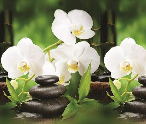 Белая орхидея. Фартук для кухни пластиковый. 2 метра