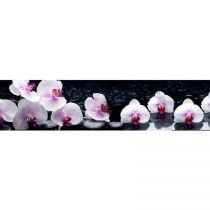 251 КП Орхидеи. Фартук для кухни пластиковый. 3 метра