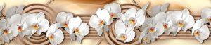 Орхидеи 2366