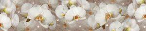 Орхидеи 7