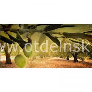 154 Оливки. Фартук для кухни МДФ. 2,8 метра