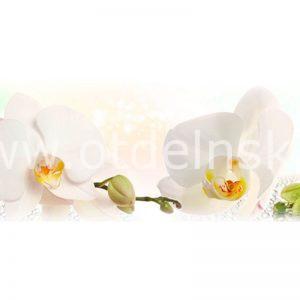 244 Белые орхидеи. Фартук для кухни МДФ. 2,8 метра