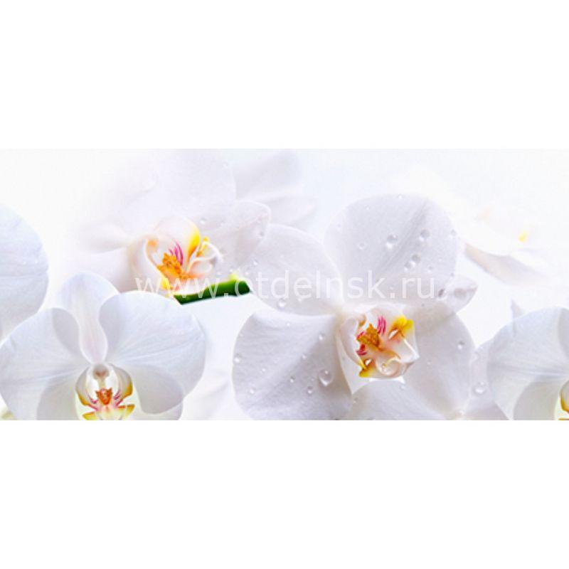 245 Белые орхидеи. Фартук для кухни МДФ. 2,8 метра