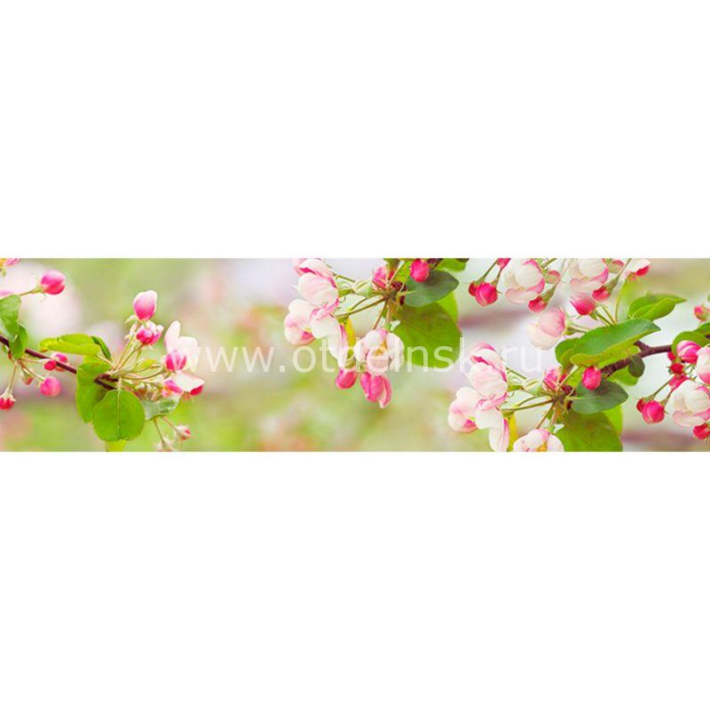 382 Яблони цвет. Фартук для кухни МДФ. 2,8 метра