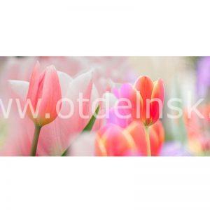 52 Тюльпаны. Фартук для кухни МДФ. 2,8 метра