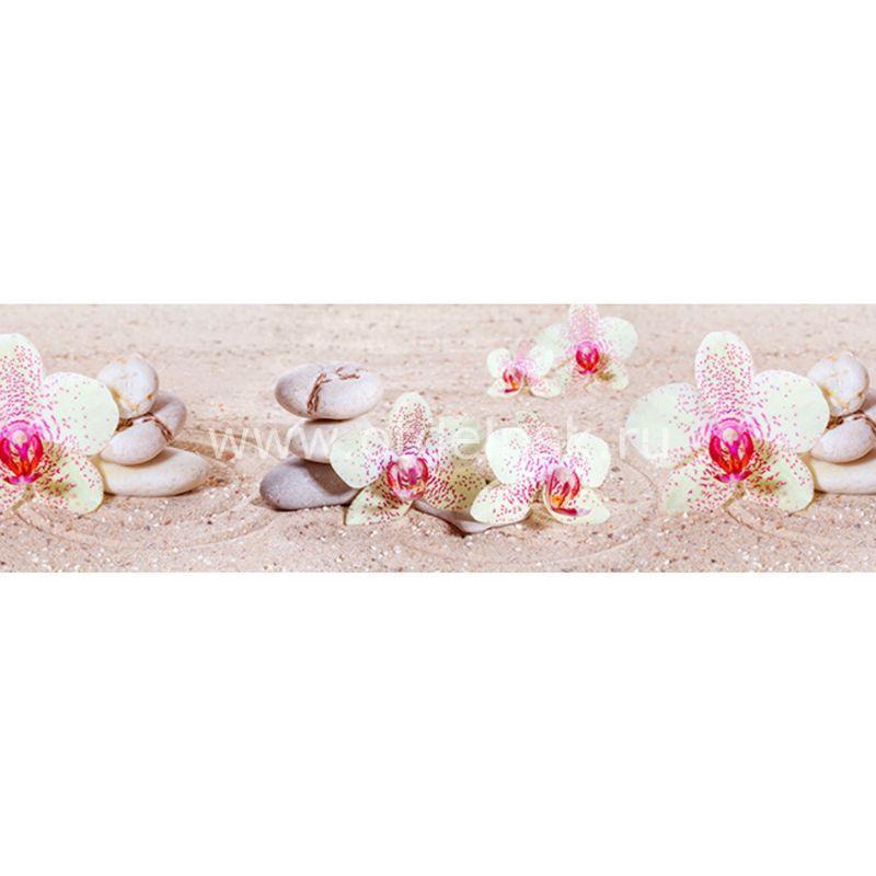 572 Белые орхидеи. Фартук для кухни МДФ. 2,8 метра