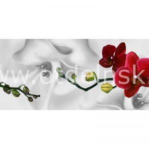 91 Красные орхидеи. Фартук для кухни МДФ. 2,8 метра