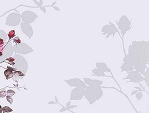 763 Птицы на ветках. Фартук для кухни МДФ. 2,8 метра