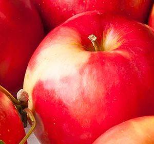 019 Фрукты, яблоки. Фартук для кухни МДФ. 2,8 метра