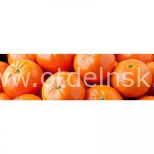 020 Фрукты, мандарины. Фартук для кухни МДФ. 2,8 метра