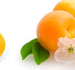056 Фрукты, абрикосы. Фартук для кухни МДФ. 2,8 метра