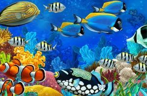 6369 Красное море. Фартук для кухни МДФ. 2,8 метра