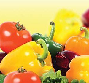 058 Овощи. Фартук для кухни МДФ. 2,8 метра