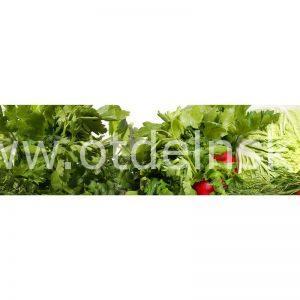 069 Овощи. Фартук для кухни МДФ. 2,8 метра
