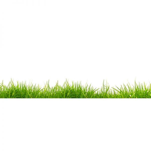 5992 Трава. Фартук для кухни МДФ. 2,8 метра