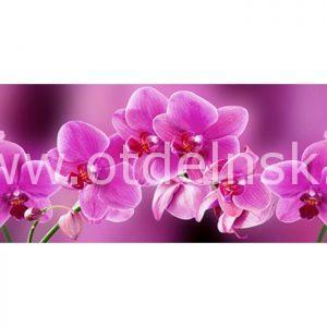 280 Орхидеи. Фартук для кухни пластиковый. 3 метра
