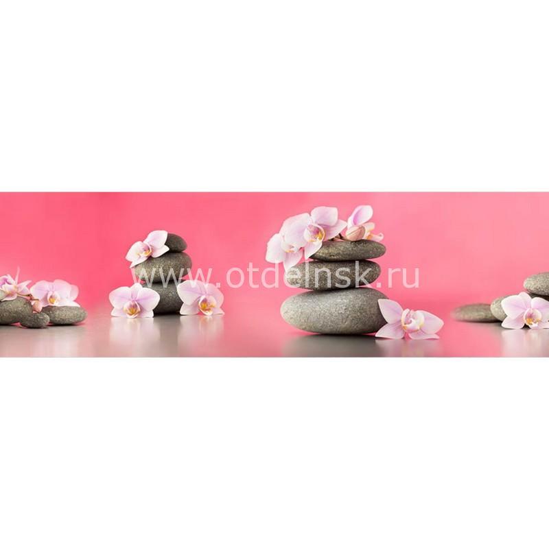 AG 72 Орхидеи и камни. Фартук для кухни МДФ. 2440х610. Толщина 4 мм