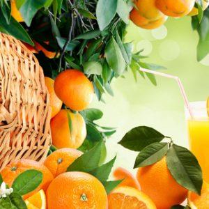 AG 82 Апельсиновый рай. Фартук для кухни МДФ. 2440х610. Толщина 4 мм