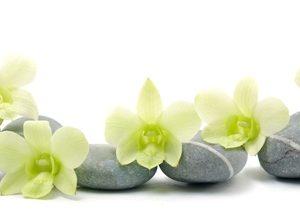 9221 Орхидеи, спа. Фартук для кухни пластиковый. 3 метра