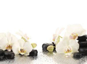 9255 Белые орхидеи, спа. Фартук для кухни пластиковый. 3 метра