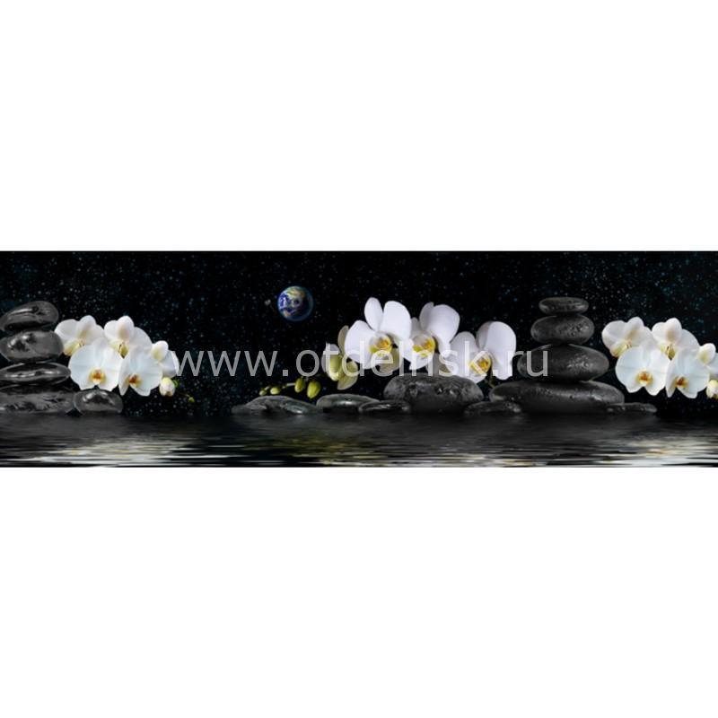 8714 Орхидеи, космос. Фартук для кухни пластиковый. 3 метра