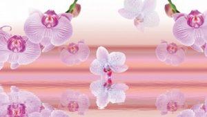 9116 Розовые орхидеи. Фартук для кухни пластиковый. 3 метра