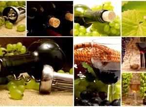 9271 Вино. Фартук для кухни пластиковый. 3 метра