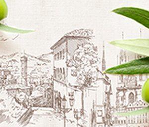 Итальянская олива. СА. Фартук для кухни пластиковый. 3 метра