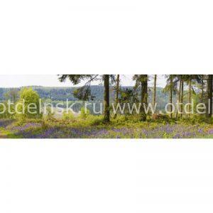 Кухонный фартук ХДФ. 10754 Природа.