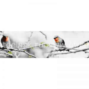 Фартук ХДФ кухонный. 10899 Птицы на ветке.