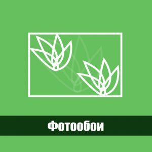Фотоообои