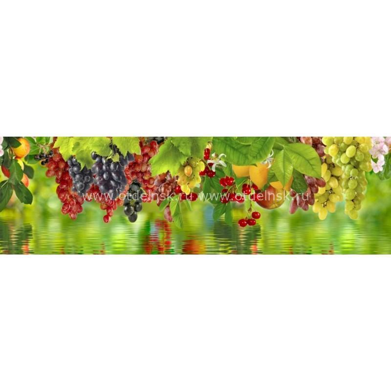 10984 Ягоды и фрукты. Фартук для кухни пластиковый. 3 метра